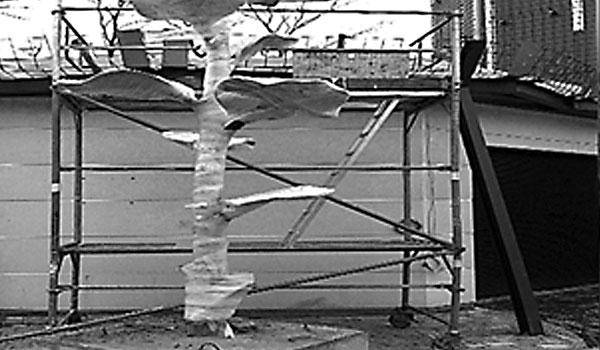Relativ Schreber Gerüstbau - Sicherheit und Kompetenz durch langjähige LA99